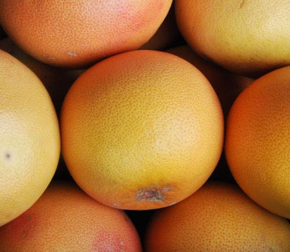 Grapefruit (Pomelo ros