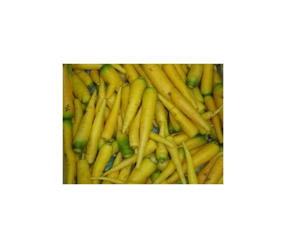 Karotten Pf