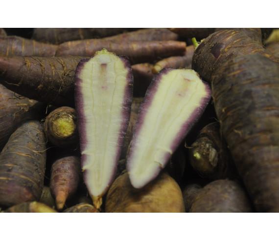 carottes Gniff (Pro specia Rara)
