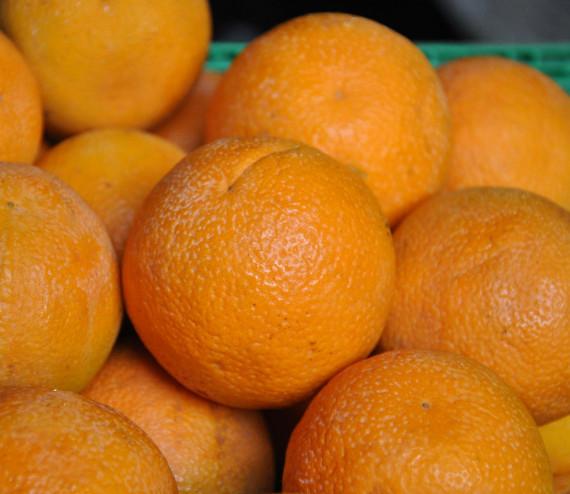 Oranges blondes