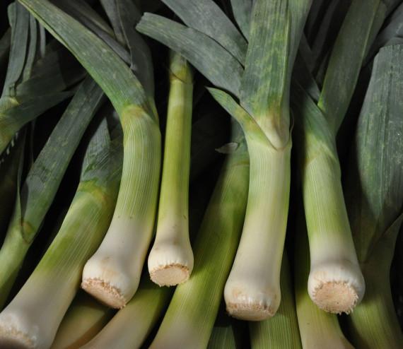 Poireaux verts