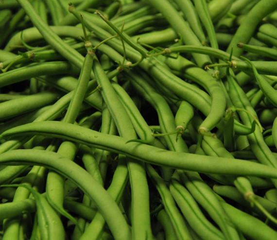 Stangenbohnen gr